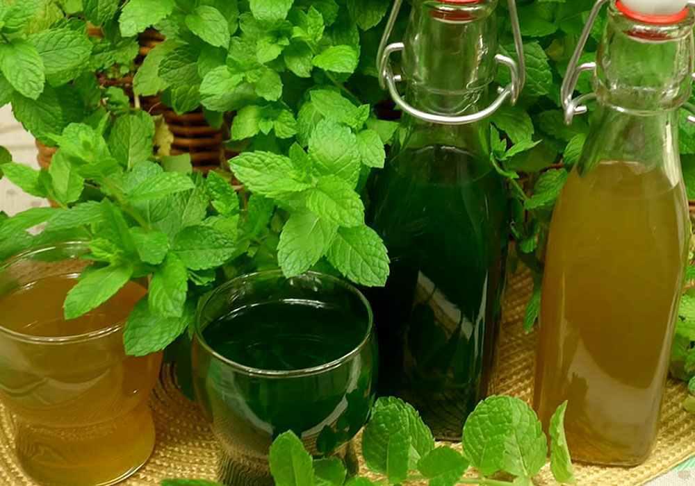 Быстрый мятный сироп - пошаговый рецепт, фото 1
