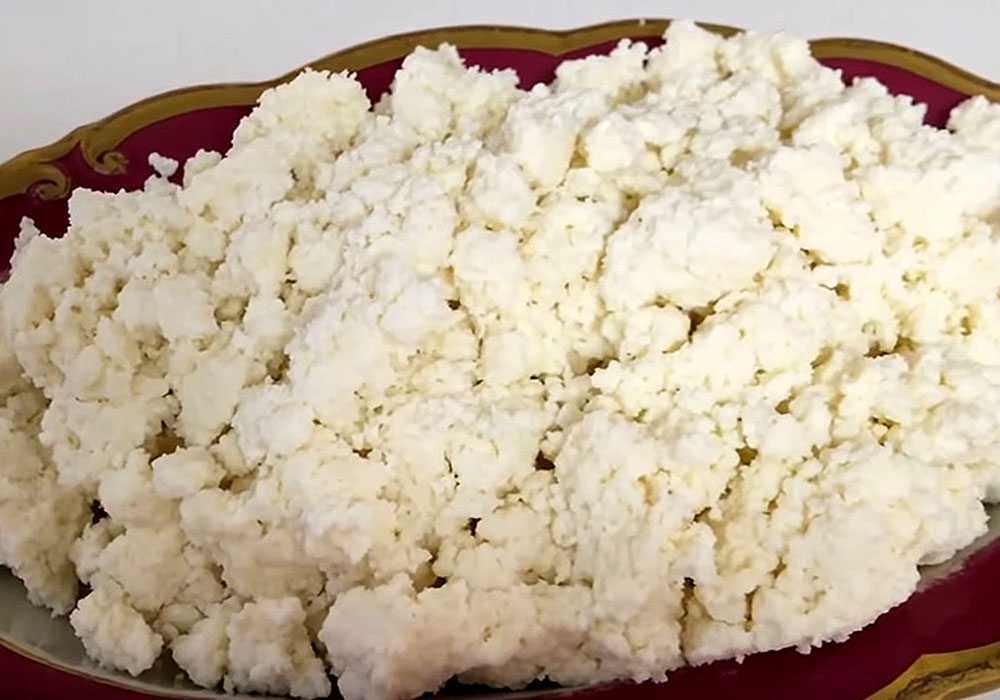 Домашний творог из козьего молока - пошаговый рецепт, фото 1
