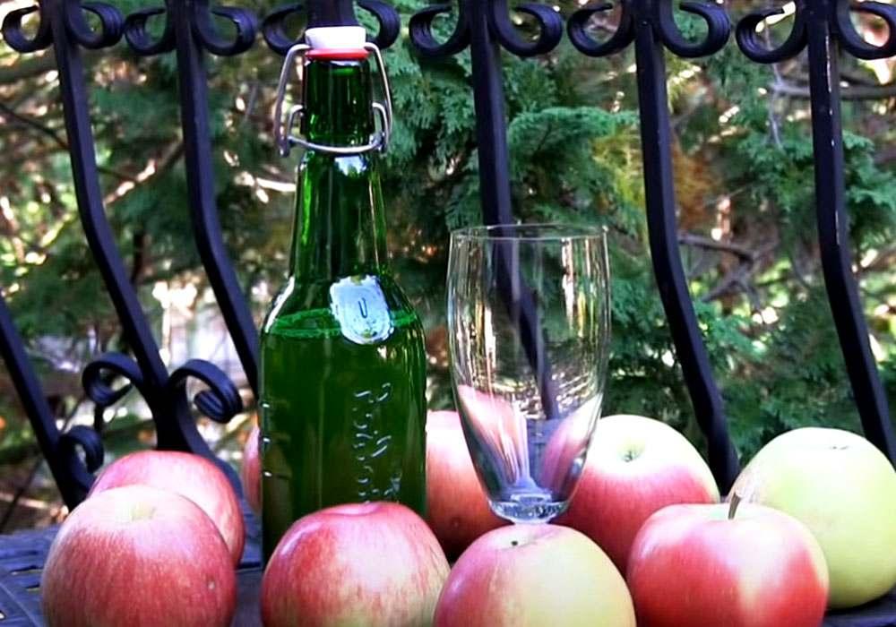 Сидр яблочный - пошаговый рецепт, фото 1